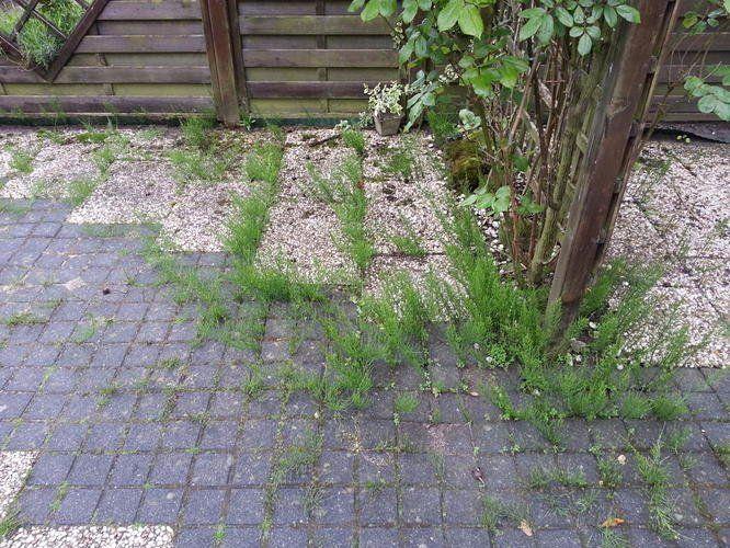 Goedkoop Tuin Aanleggen : Terras set aanbieding lovely goedkoop tuin aanleggen fantastisch